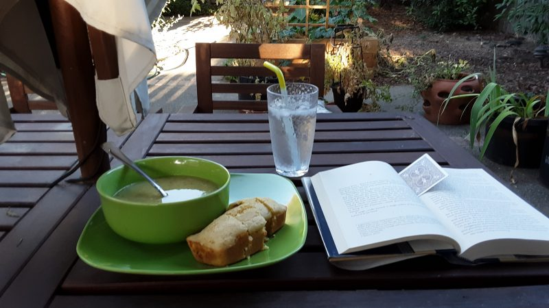 a meal and a book on a table in my backyard