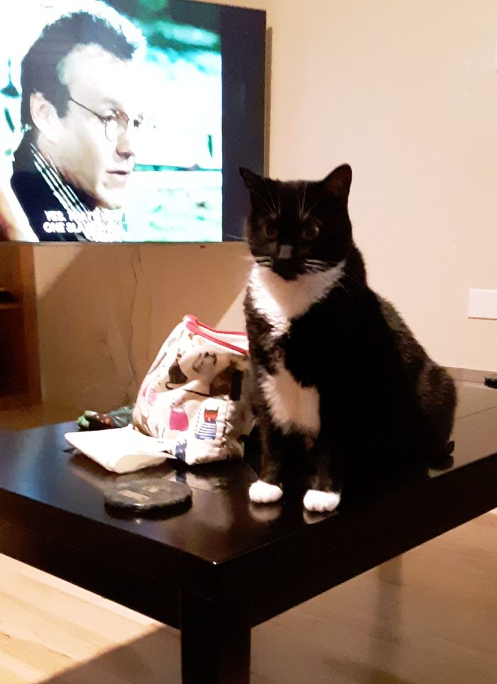 Huey, seated on the coffee table, with Buffy the Vampire Slayer on the TV in the background