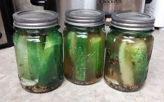 three small jars of pickles