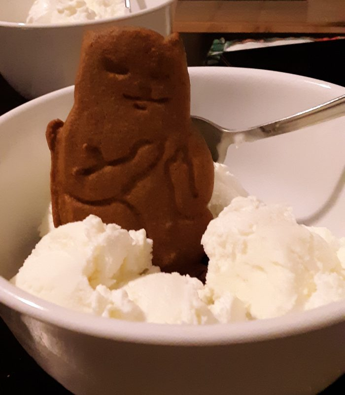 a gingerbread cat upright in a bowl of ice cream