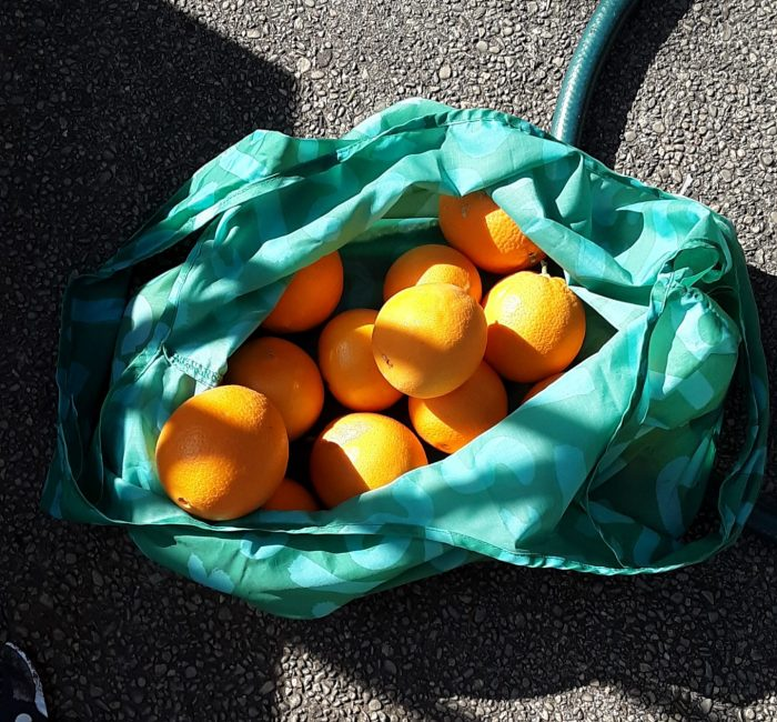 a green bag with about 15 oranges inside
