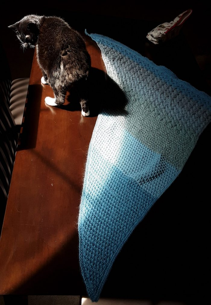 Noordzee shawl spread out on the table with Huey the cat standing nearby