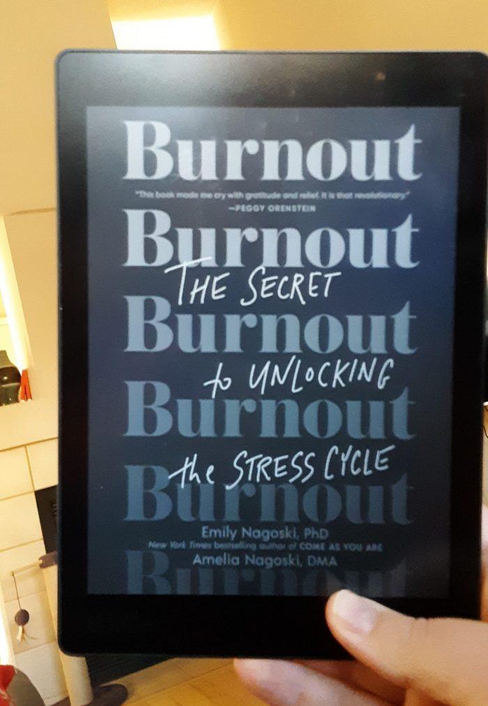 """Burnout"" book cover shown on Kobo ereader"