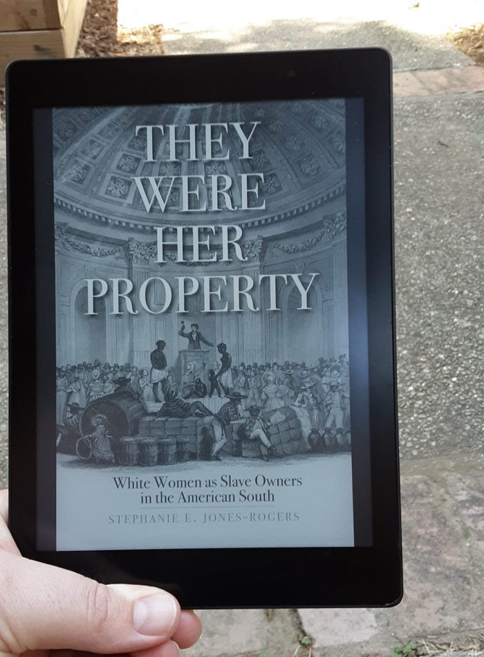 book cover of They Were Her Property on kobo ereader