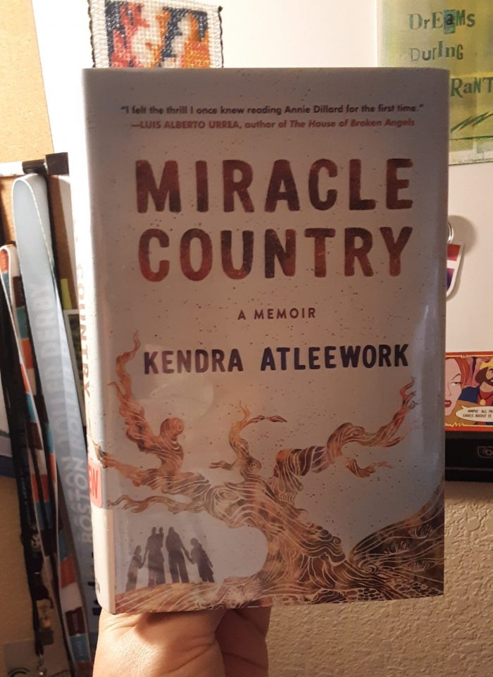 book: Miracle Country