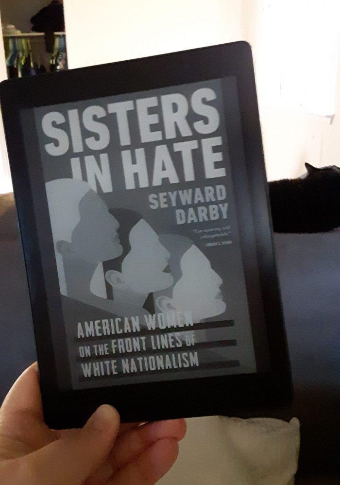 Book cover of Sisters in Hate seen on Kobo ereader