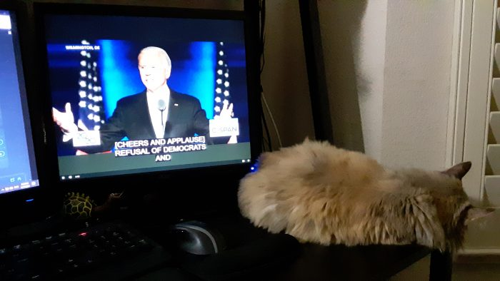the Biden speech playing on my computer monitor with viola the cat sleeping on the edge of the desk