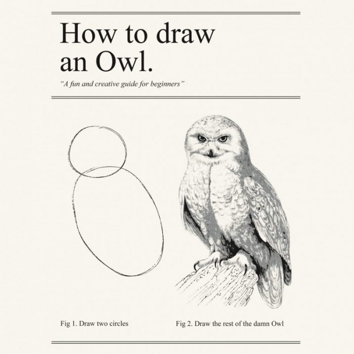 "graphic captioned ""How to draw an owl."" The first step is ""draw two cricles"" and the second is ""draw the rest of the damn owl."""