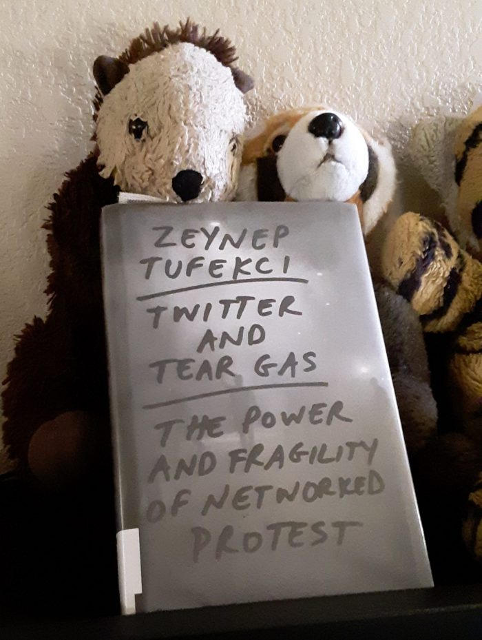 "the book ""Twitter and Teargas"" leaned against two stuffed animals"