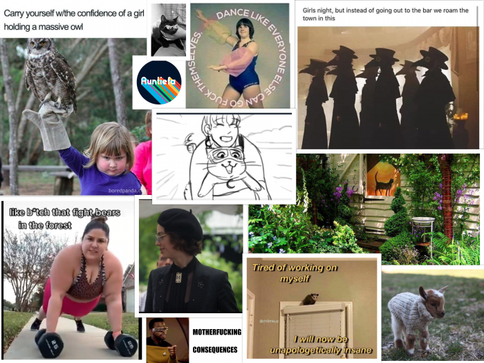 collage of pictures including a garden, a goat in a sweater, a woman lifting weights, a girl with an owl and a cat wearing sunglasses