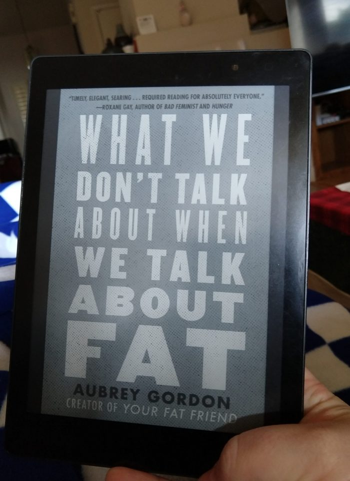 What Book cover on kobo ereader: We Dont Talk about when We Talk about Fat