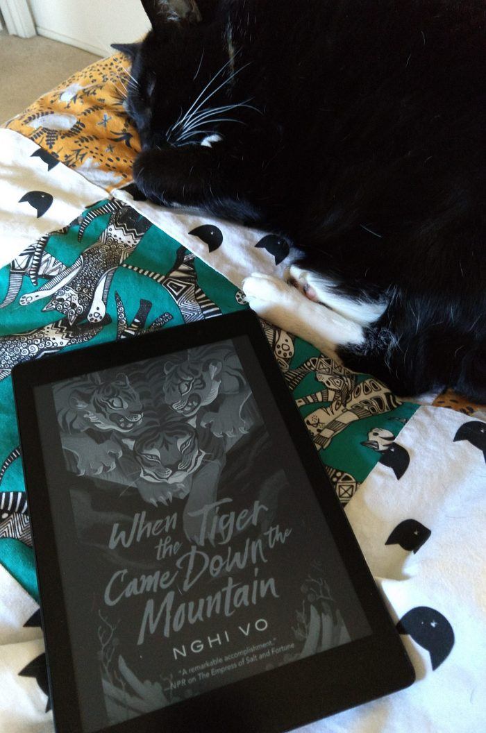 cover of the book When Tiger Came Down the Mountain shown on Kobo ereader. Huey the cat napping next to the book.