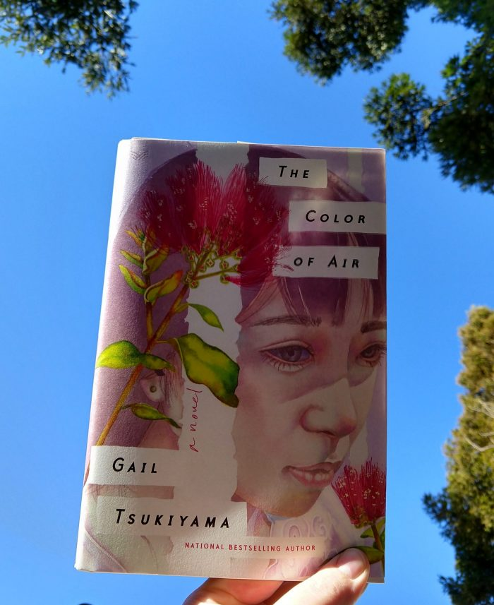 """""""The Color of Air"""" a hardback book held up to the sky, picture shows the book cover and a blue sky framed by the tops of pine trees behind it"""
