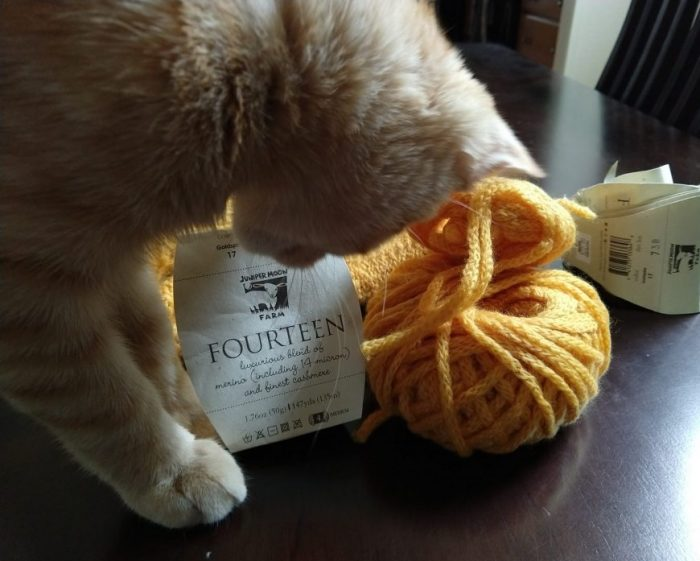 folded sweater vest in the background with half a ball of matching yarn and the yarn labels in the foreground. Fritz the cat is in front of it all gearing up to attack the tags
