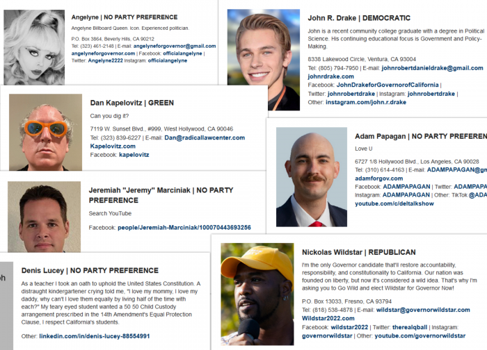 """a collage of 7 screenshots of gubernatorial candidate names andn statements. Each have a weird photo or weird statement (or both) such as simply """"Love U,"""" Search YouTube"""" or """"Can you dig it?"""" for three of the candidates."""